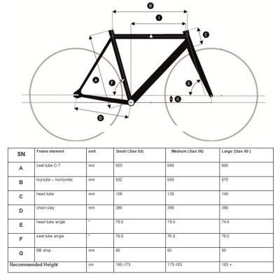 Geometry chart - Zonda